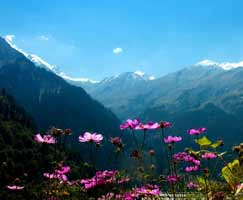 Honeymoon Tour To Manali